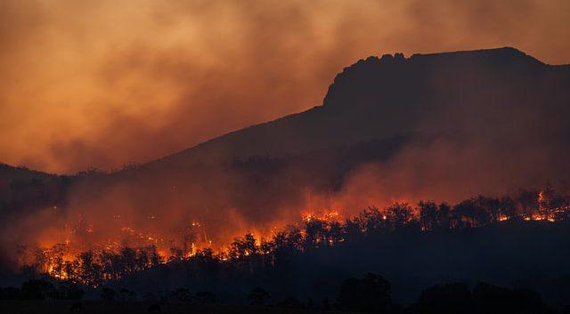 კლიმატის კრიზისი